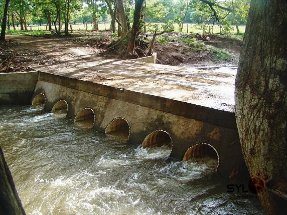 Cabezales y Puentes SYL Ingenieria